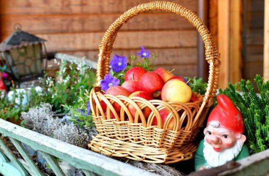 Hofeigene Produkte vom Obermoarhof