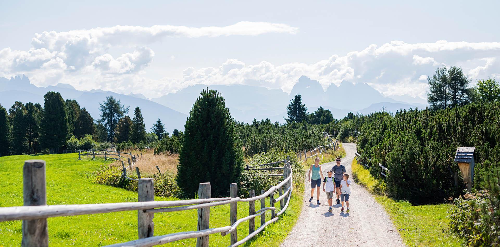 Urlaub auf dem Bauernhof in Albeins/Brixen